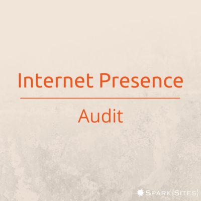 Internet Presence Audit - Spark Sites - Lakeland, FL