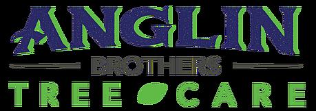 Anglin Brothers Tree Care | Post Hurricane Irma Help | Lakeland. FL