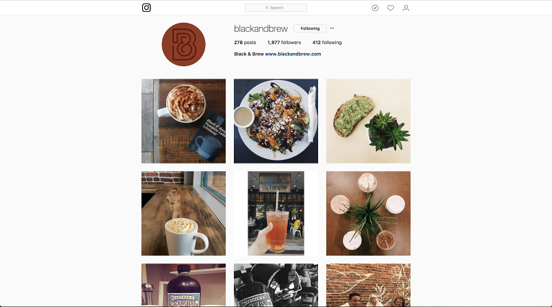 Five Tips on Having a Solid Instagram Following - Spark My Site