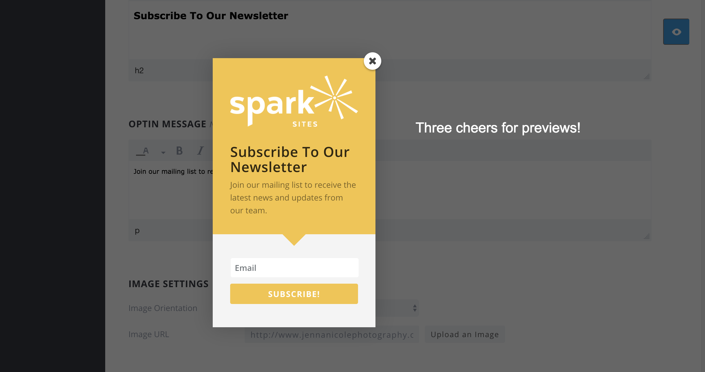 How to Add a Bloom Opt-in Form to the Sidebar - Spark My Site