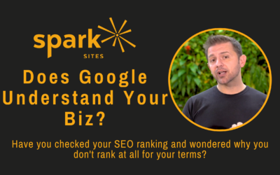 Does Google Even Understand Your Business?